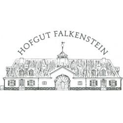 """Weißburgunder Spätlese trocken 2020 """"Niedermenniger Herrenberg"""" / Hofgut Falkenstein"""