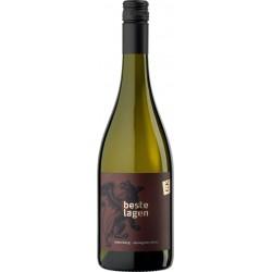"Sauvignon Blanc 2016 ""Römerberg"" / Weingut Genheimer-Kiltz"