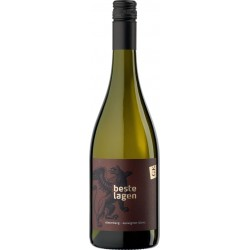 "Sauvignon Blanc 2019 ""Römerberg"" / Weingut Genheimer-Kiltz"