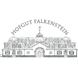 "Riesling Auslese 2018 ""Krettnacher Euchariusberg"" / Hofgut Falkenstein"